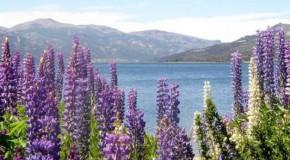 El Bolsón, corredor de los lagos