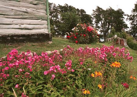Fiesta de los Jardines, en la hermosa Neuquén